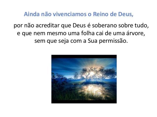 Ainda não vivenciamos o Reino de Deus, por não acreditar que Deus é soberano sobre tudo, e que nem mesmo uma folha cai de ...