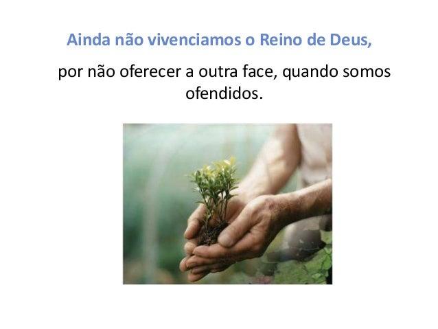 Ainda não vivenciamos o Reino de Deus, por não oferecer a outra face, quando somos ofendidos.