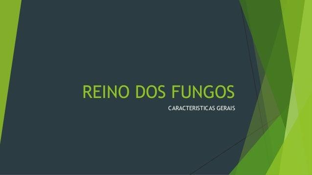 REINO DOS FUNGOS CARACTERISTICAS GERAIS