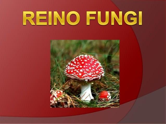 Durante muito tempo, os fungos foramconsiderados como vegetais e, somente apartir de 1969, passaram a ser classificadosem ...