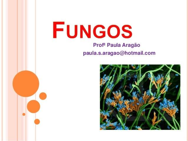 Profª Paula Aragão  paula.s.aragao@hotmail.com