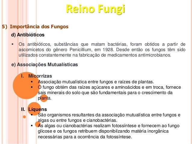 Como curei um fungo de pregos medicina de respostas permanente