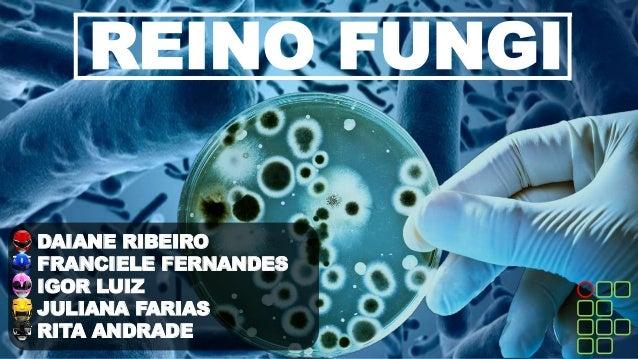 REINO FUNGI DAIANE RIBEIRO FRANCIELE FERNANDES IGOR LUIZ JULIANA FARIAS RITA ANDRADE