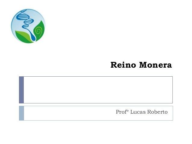 Reino Monera Profº Lucas Roberto