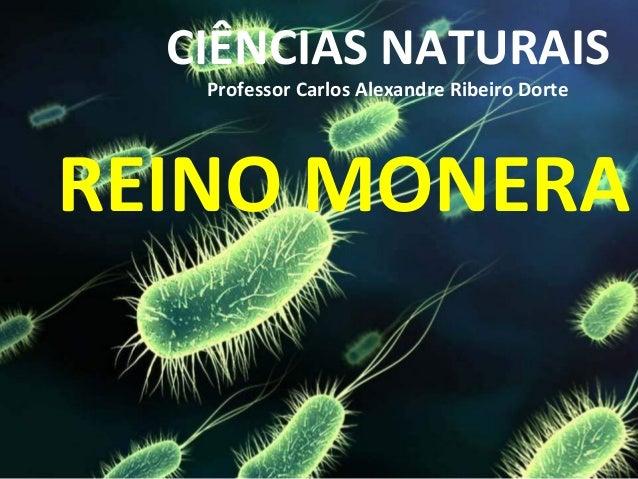 CIÊNCIAS NATURAIS Professor Carlos Alexandre Ribeiro Dorte  REINO MONERA