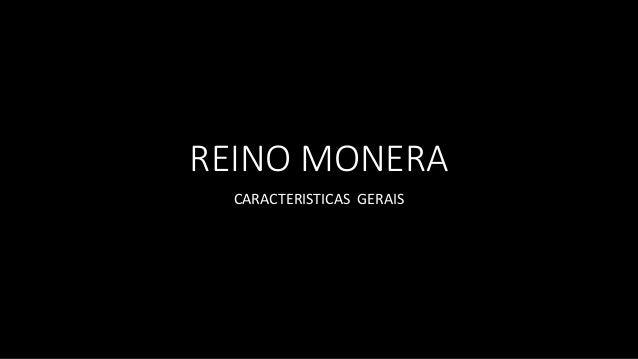REINO MONERA CARACTERISTICAS GERAIS