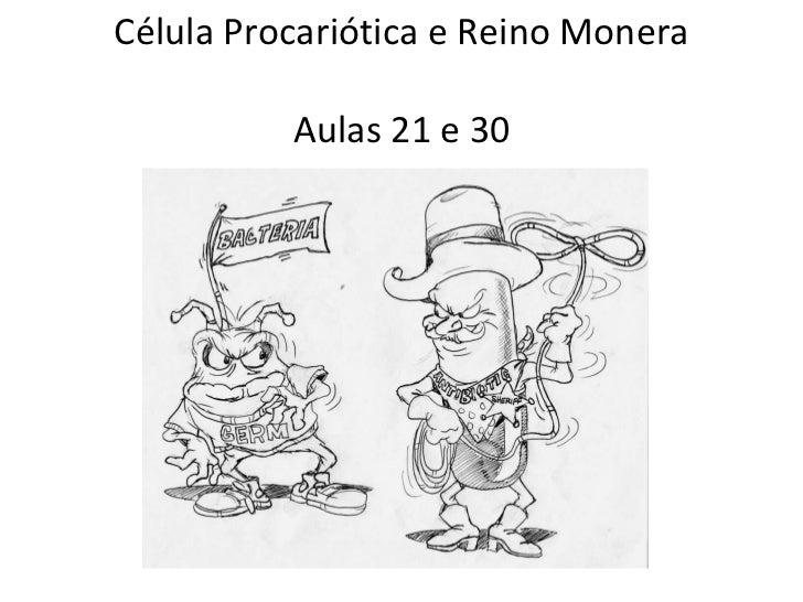 Célula Procariótica e Reino Monera Aulas 21 e 30 Prof. Tubão