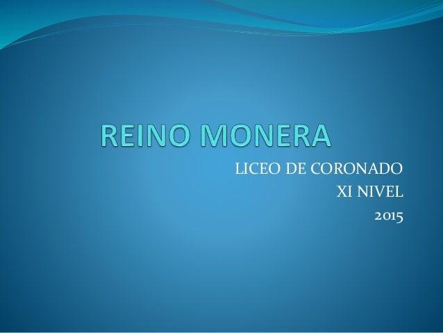 LICEO DE CORONADO XI NIVEL 2015