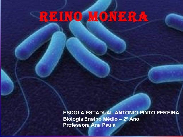 REINO MONERA  ESCOLA ESTADUAL ANTONIO PINTO PEREIRA  Biologia Ensino Médio – 2º Ano  Professora Ana Paula