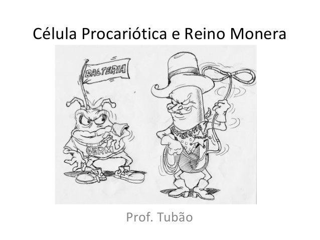 Célula Procariótica e Reino MoneraProf. Tubão