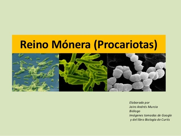 Reino Mónera (Procariotas)Elaborado porJairo Andrés MurciaBiólogoImágenes tomadas de Googley del libro Biología de Curtis