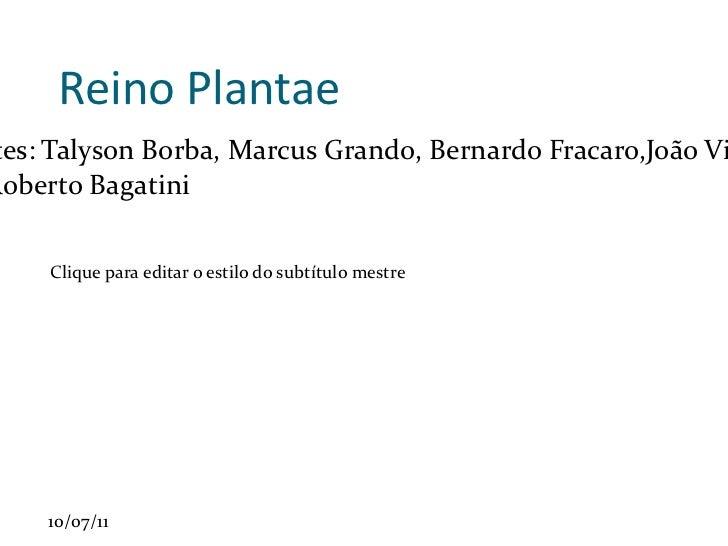 Reino Plantae Componentes: Talyson Borba, Marcus Grando, Bernardo Fracaro,João Vitor Zaffari Professor: Roberto Bagatini