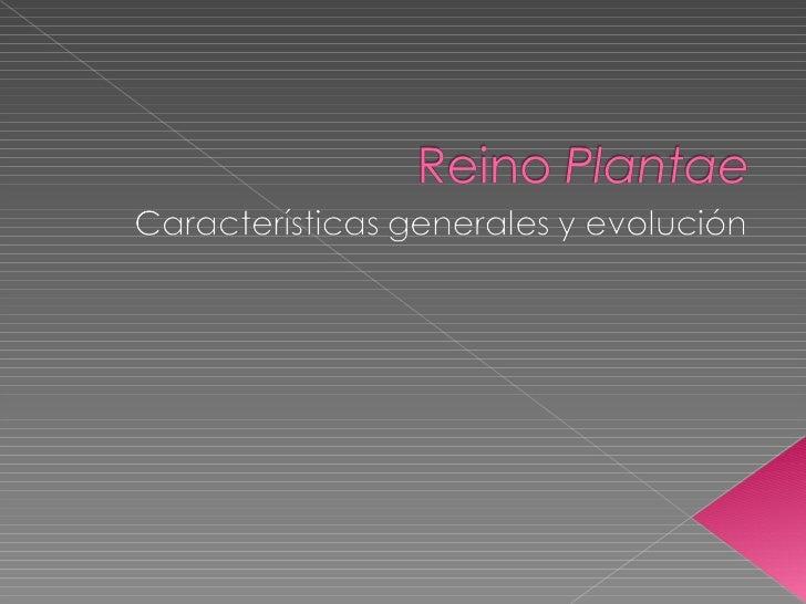    El Reino Plantae (o vegetal) viene a    representar el más importante eslabón    dentro de toda cadena alimenticia, la...