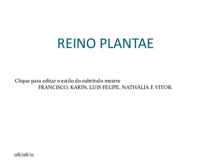 REINO PLANTAE FRANCISCO, KARIN, LUIS FELIPE, NATHÁLIA E VITOR.