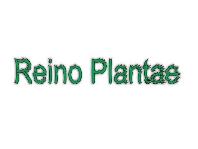 • As plantas são seres pluricelulares e eucariontes. Nesses aspectos elas são semelhantes aos animais e a muitos tipos de ...