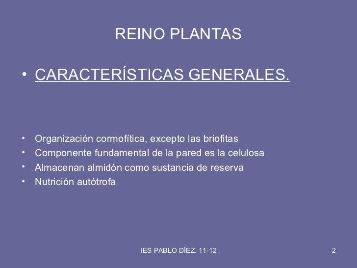 Reino plantas Slide 2