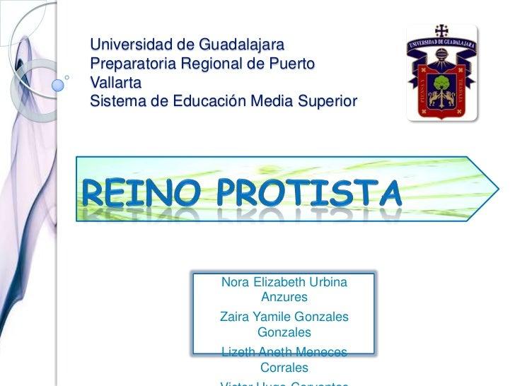 Universidad de GuadalajaraPreparatoria Regional de Puerto Vallarta Sistema de Educación Media Superior<br />Reino Protista...