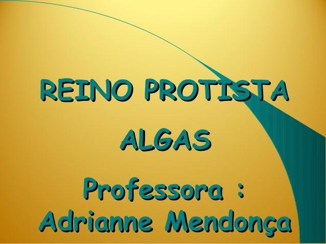 REINO PROTISTA     ALGAS   Professora :Adrianne Mendonça