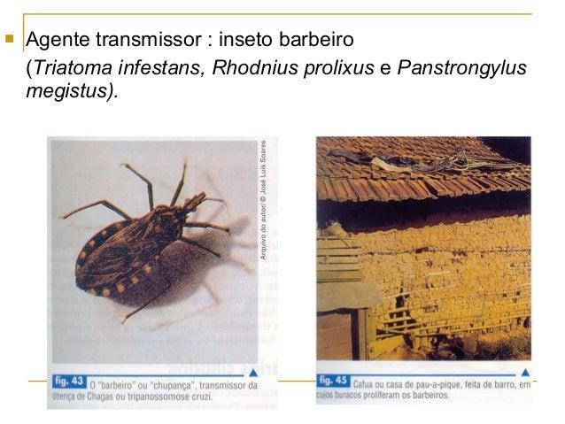 Métodos nacionais de remoção de vermes