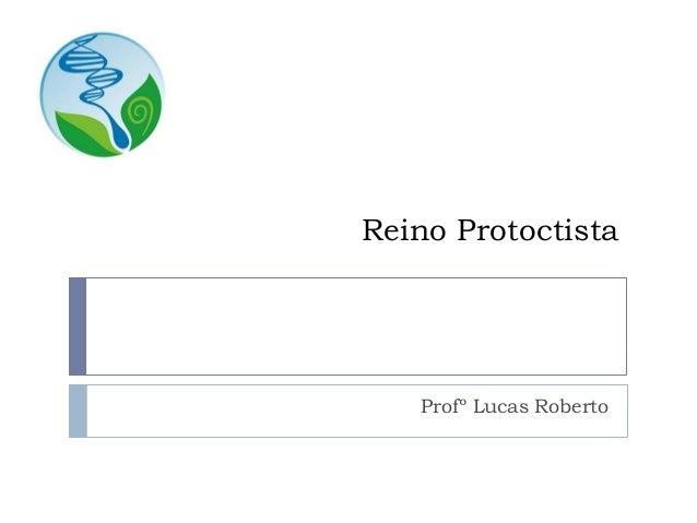 Reino Protoctista Profº Lucas Roberto