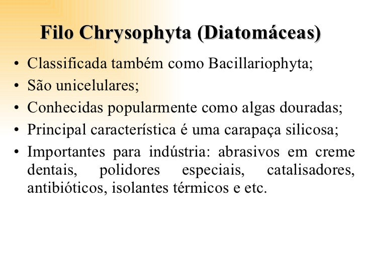 Filo Chrysophyta (Diatomáceas)  <ul><li>Classificada também como Bacillariophyta; </li></ul><ul><li>São unicelulares; </li...
