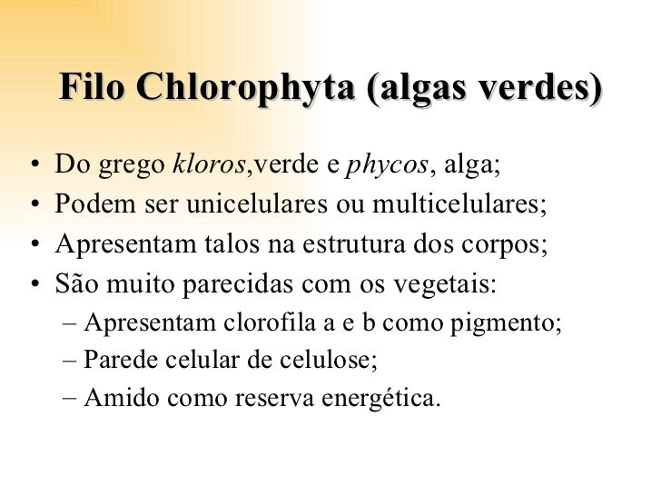 Filo Chlorophyta (algas verdes) <ul><li>Do grego  kloros ,verde e  phycos , alga; </li></ul><ul><li>Podem ser unicelulares...