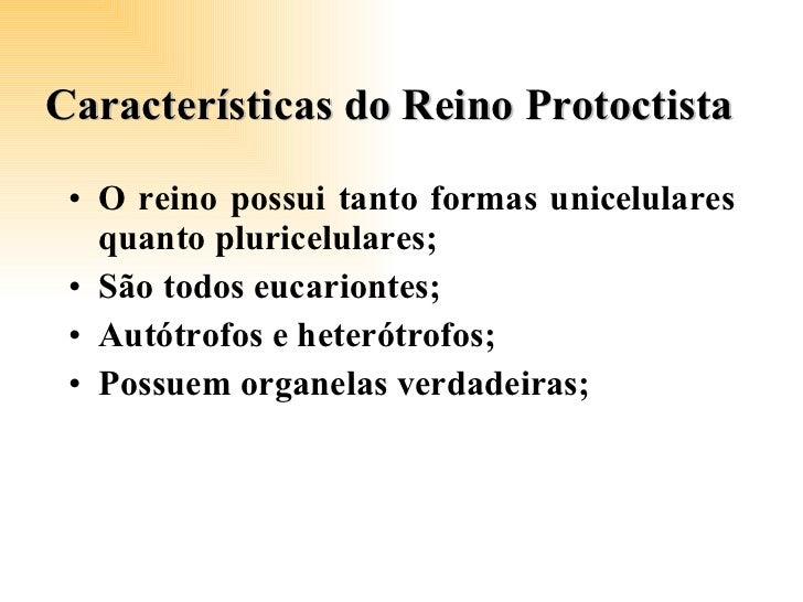 Características do Reino Protoctista <ul><li>O reino possui tanto formas unicelulares quanto pluricelulares;  </li></ul><u...