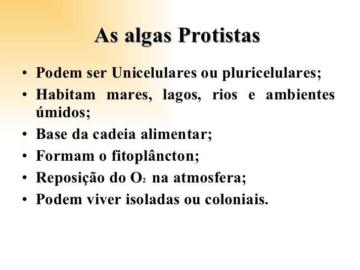 As algas Protistas  <ul><li>Podem ser Unicelulares ou pluricelulares; </li></ul><ul><li>Habitam mares, lagos, rios e ambie...