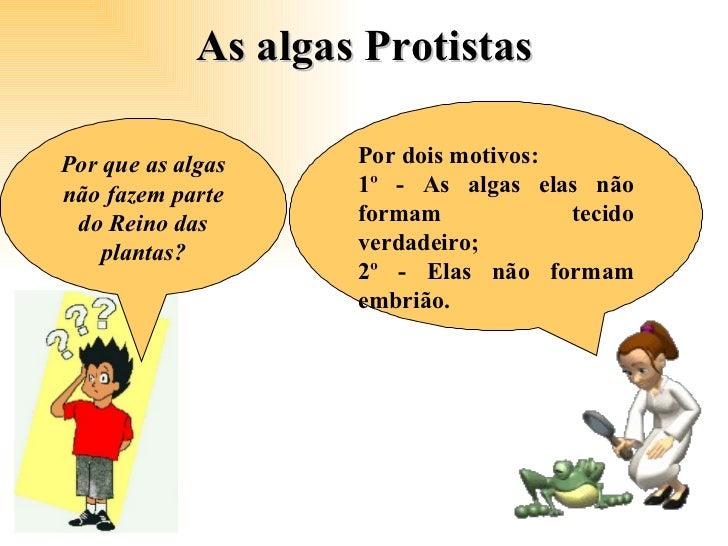 As algas Protistas  Por que as algas não fazem parte do Reino das plantas? Por dois motivos: 1º - As algas elas não formam...
