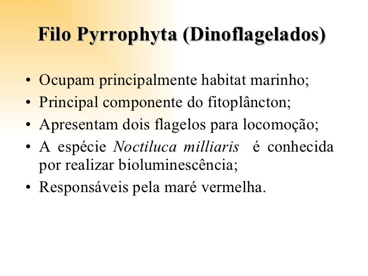 Filo Pyrrophyta (Dinoflagelados)  <ul><li>Ocupam principalmente habitat marinho; </li></ul><ul><li>Principal componente do...
