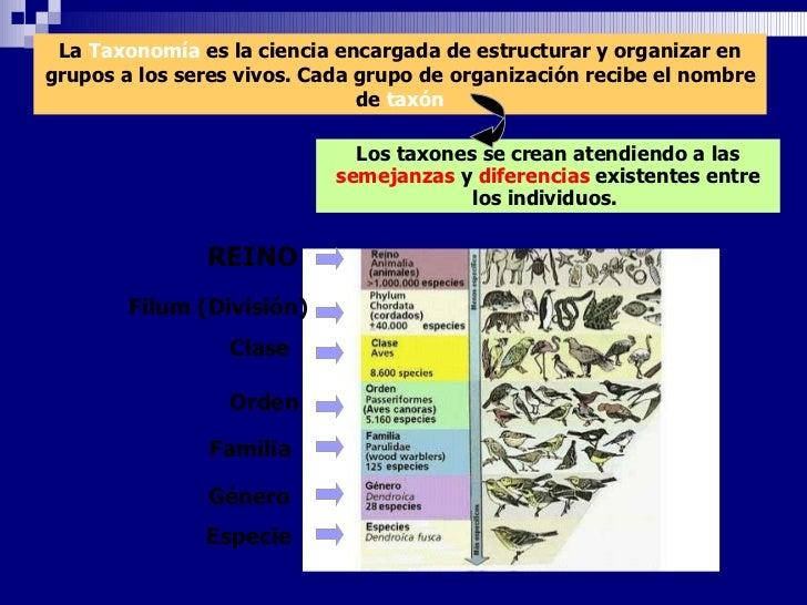 La  Taxonomía   es la ciencia encargada de estructurar y organizar en grupos a los seres vivos. Cada grupo de organización...