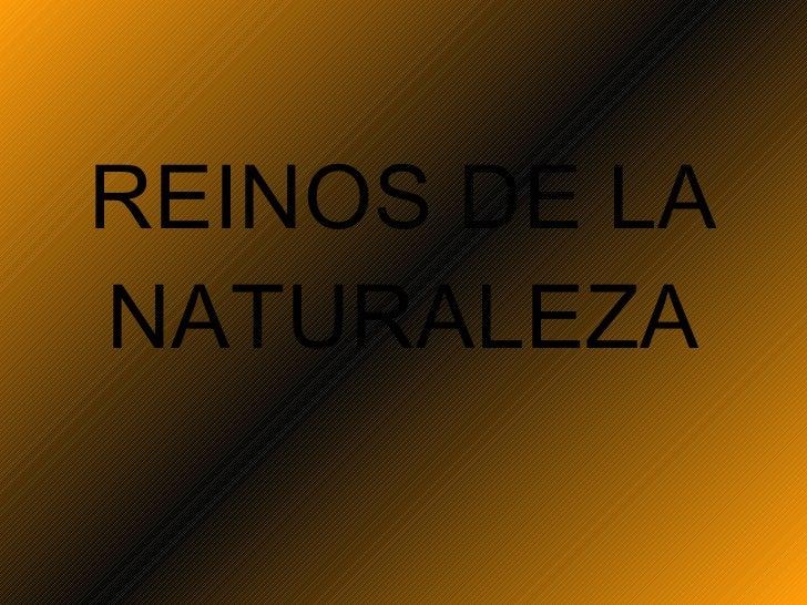 REINOS DE LA NATURALEZA Prof. Andrea Arenas R .