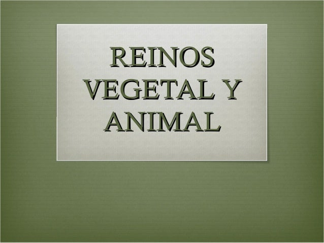 REINOSVEGETAL Y ANIMAL