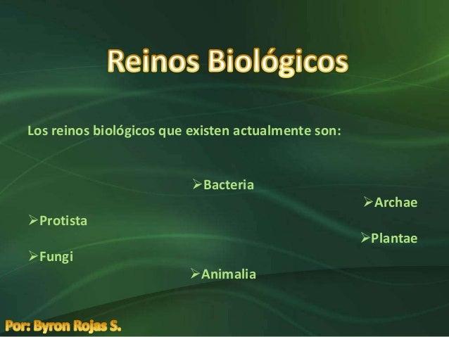 Los reinos biológicos que existen actualmente son:                          Bacteria                                     ...