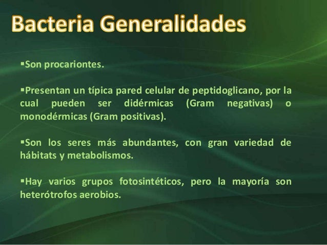 Reinos Biológicos Slide 3
