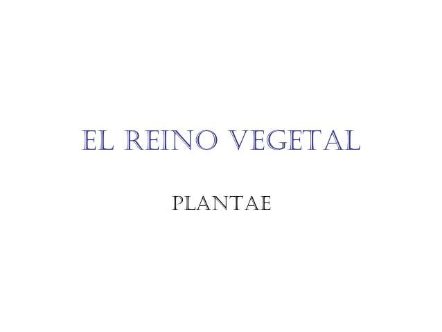 El rEino vEgEtal PlantaE