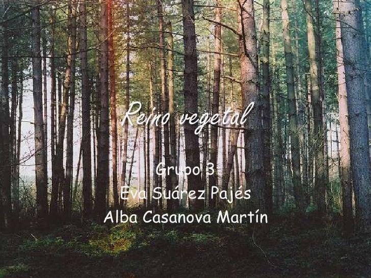 Reino vegetal<br />Grupo 3<br />Eva Suárez Pajés<br />Alba Casanova Martín<br />