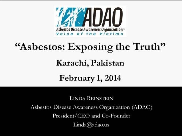 Linda Reinstein, Ban Asbestos Conference, Pakistan (2014)