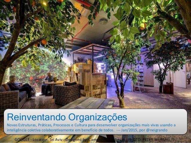 Reinventando Organizações Novas Estruturas, Práticas, Processos e Cultura para desenvolver organizações mais vivas usando ...
