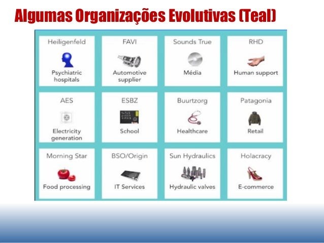 Algumas Organizações Evolutivas (Teal)