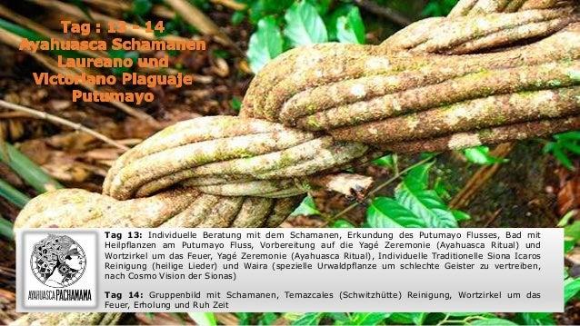 Tag 13: Individuelle Beratung mit dem Schamanen, Erkundung des Putumayo Flusses, Bad mit Heilpflanzen am Putumayo Fluss, V...