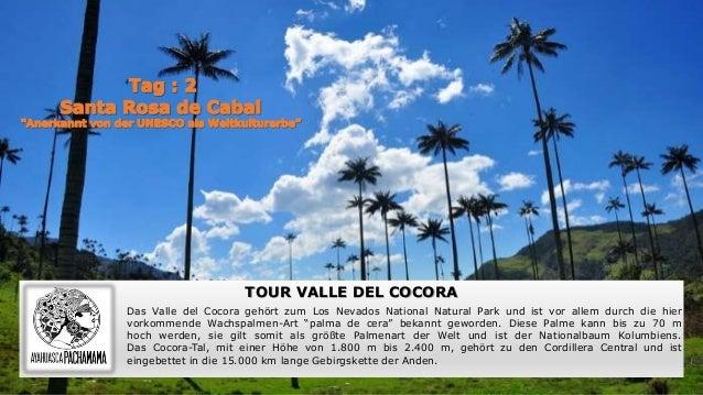 ' TOUR VALLE DEL COCORA Das Valle del Cocora gehört zum Los Nevados National Natural Park und ist vor allem durch die hier...