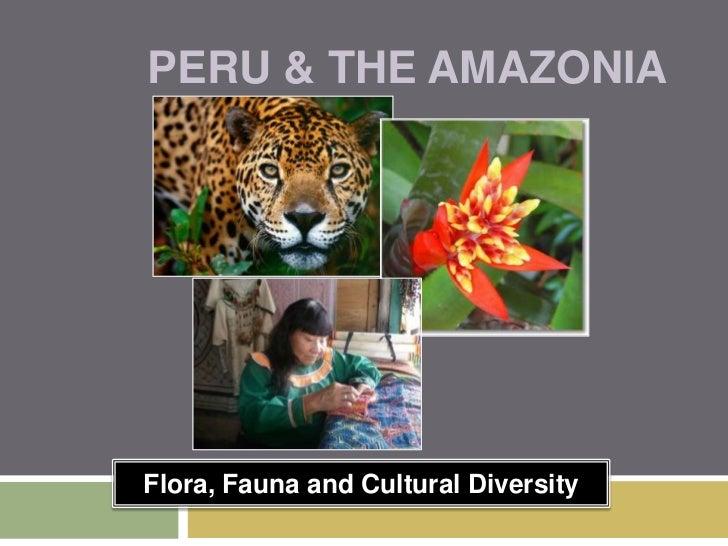 Peru & the Amazonia<br />Flora, Fauna and Cultural Diversity<br />