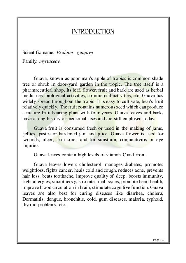 guava leaves introduction
