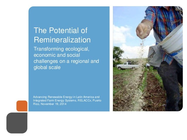 The Potential of  Remineralization  Transforming ecological,  economic and social  challenges on a regional and  global sc...