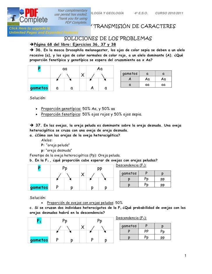 I.E.S.O. Pinar de Salomón       BIOLOGÍA Y GEOLOGÍA      4º E.S.O.   CURSO 2010/2011TEMA 3: LA HERENCIA Y TRANSMISIÓN DE C...