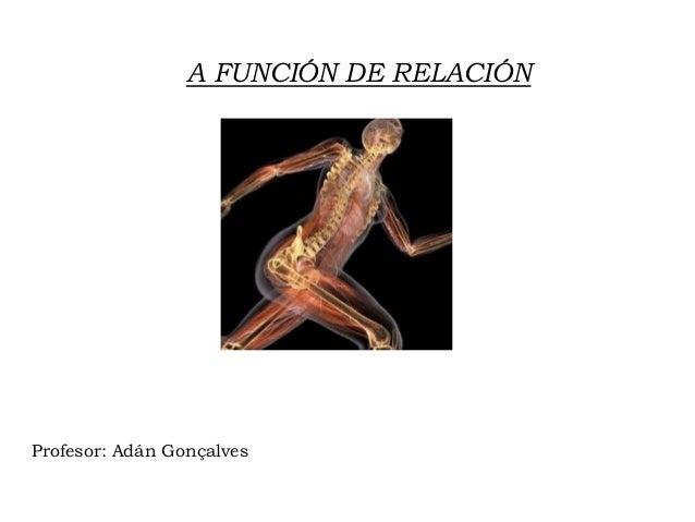 A FUNCIÓN DE RELACIÓN Profesor: Adán Gonçalves