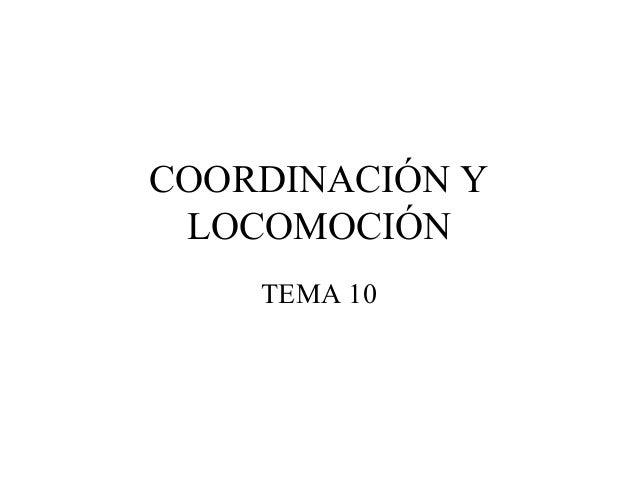 COORDINACIÓN Y LOCOMOCIÓN    TEMA 10