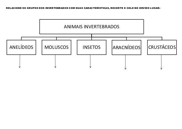RELACIONE OS GRUPOS DOS INVERTEBRADOS COM SUAS CARACTERÍSTICAS, RECORTE E COLE NO DEVIDO LUGAR:  ANIMAIS INVERTEBRADOS  AN...