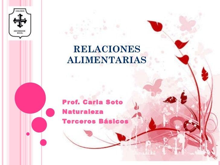 RELACIONES ALIMENTARIAS Prof. Carla Soto Naturaleza Terceros Básicos